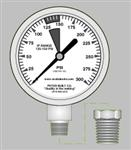 Scuba Tools IP Gauge with 1/8